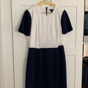 J. Crew White and Navy dress